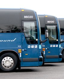 Greyhound coach buses equipped with Allison transmissions
