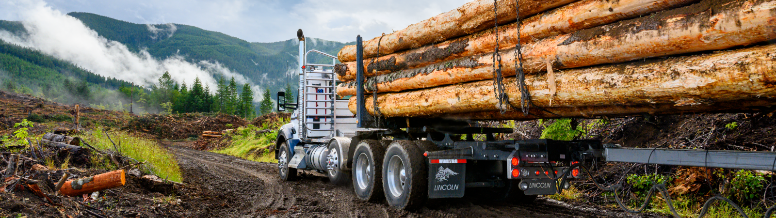 HeaderImage_Logging